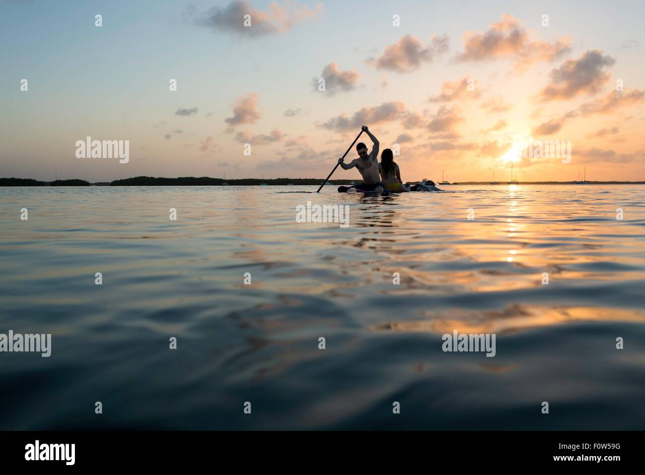 Silhouetted view of three adult friends on paddleboard at sunset, Islamorada, Florida, USA - Stock Image