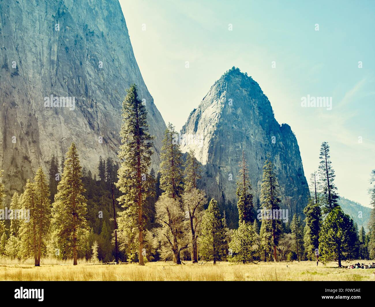 Mountains and forest, Yosemite National Park, California, USA - Stock Image