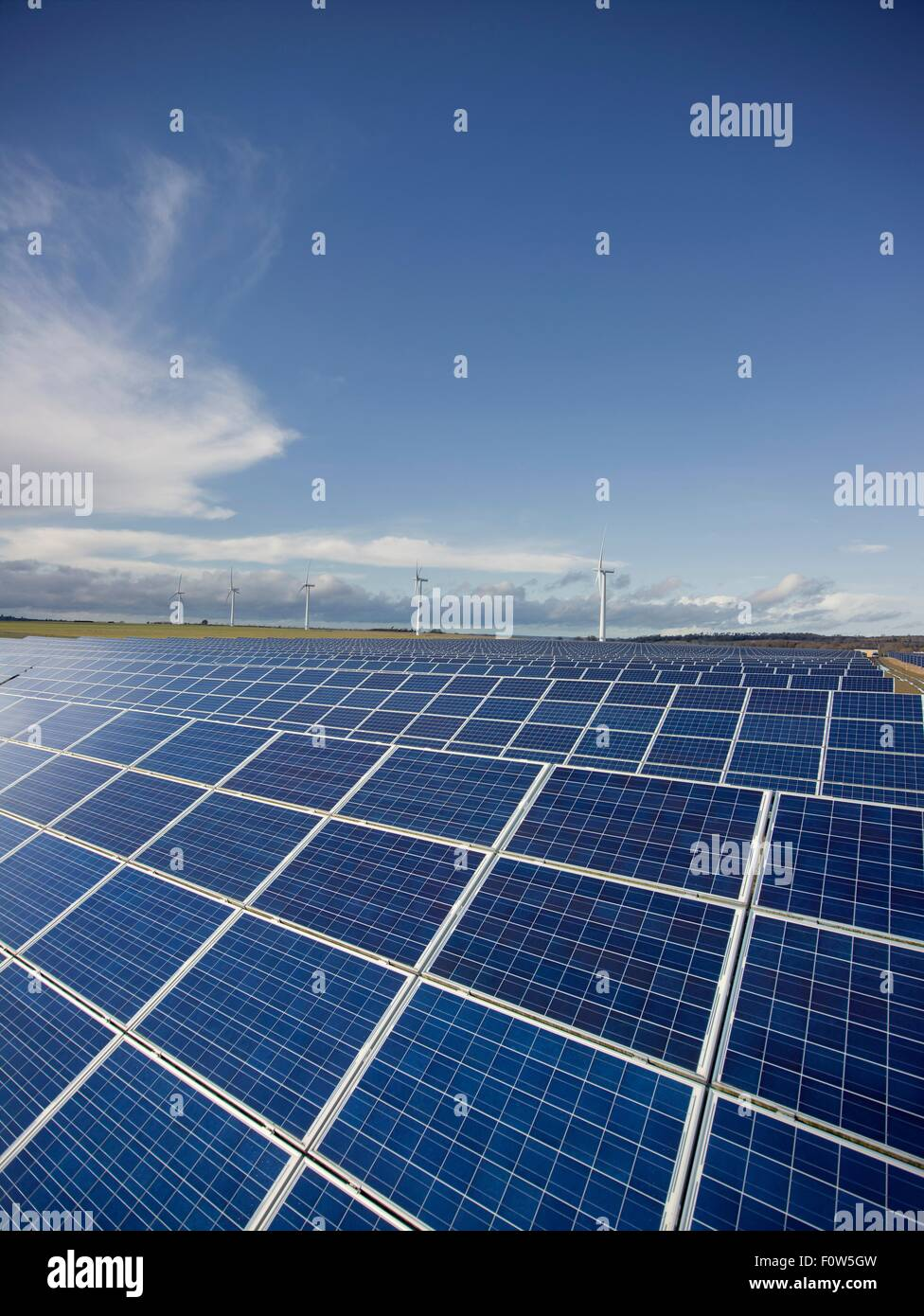 Solar farm, field of Photovoltaic panels - Stock Image