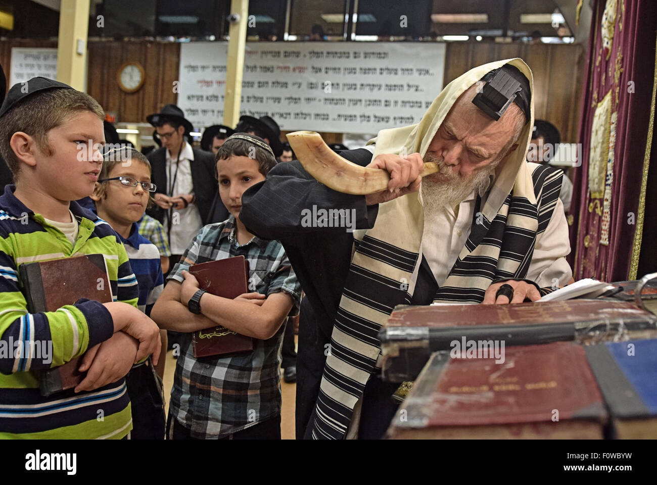 A very religious Jewish Rabbi blowing a shofar - ram's horn - at morning services before the New Year. In Brooklyn, - Stock Image