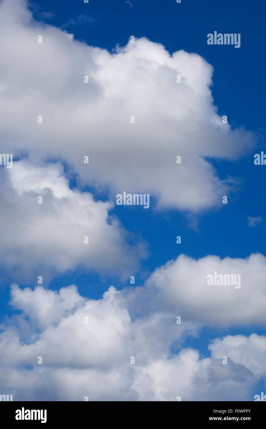 Fluffy clouds and blue sky - Stock Image