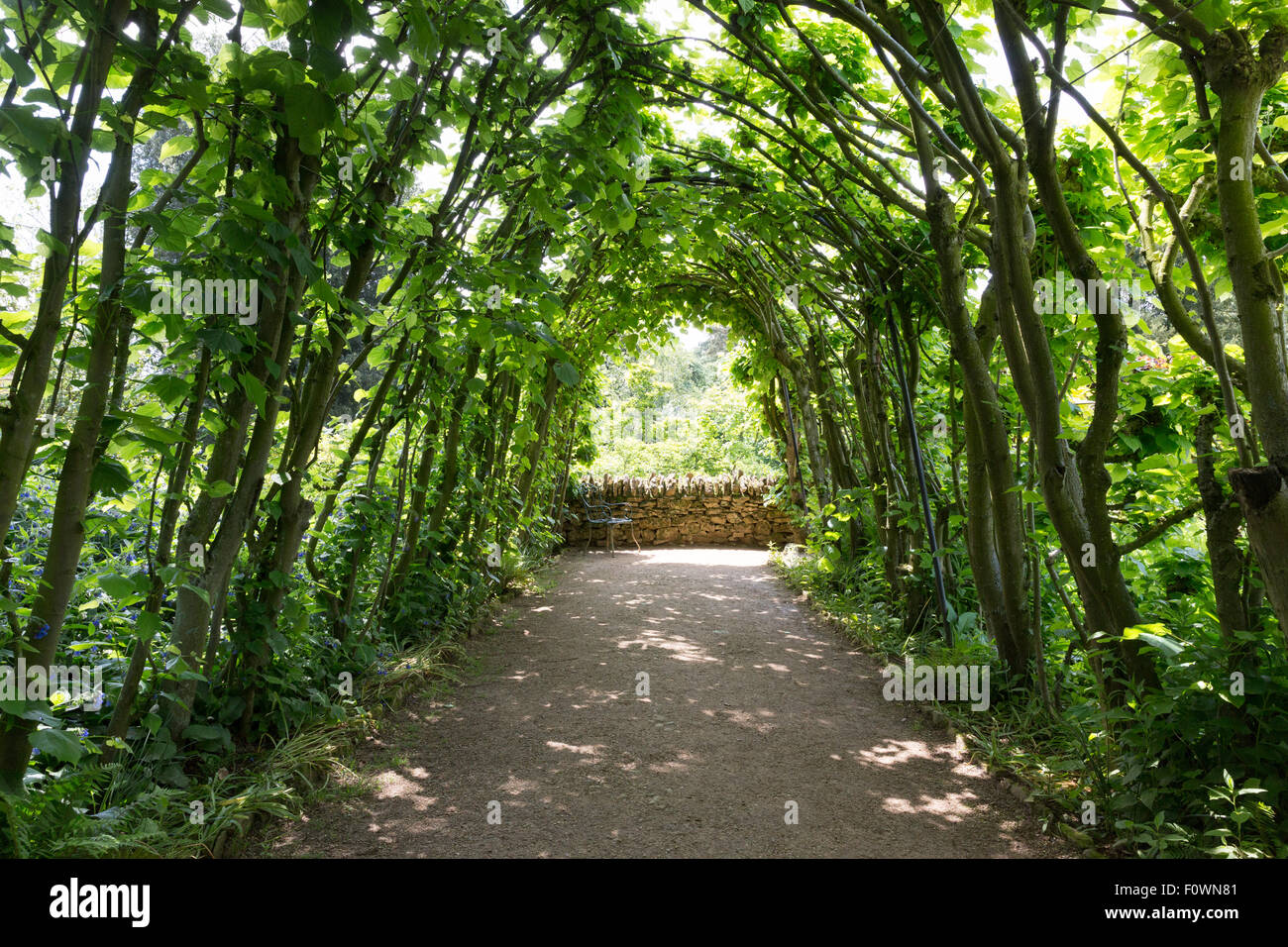 English country garden, the Cotswolds - Stock Image