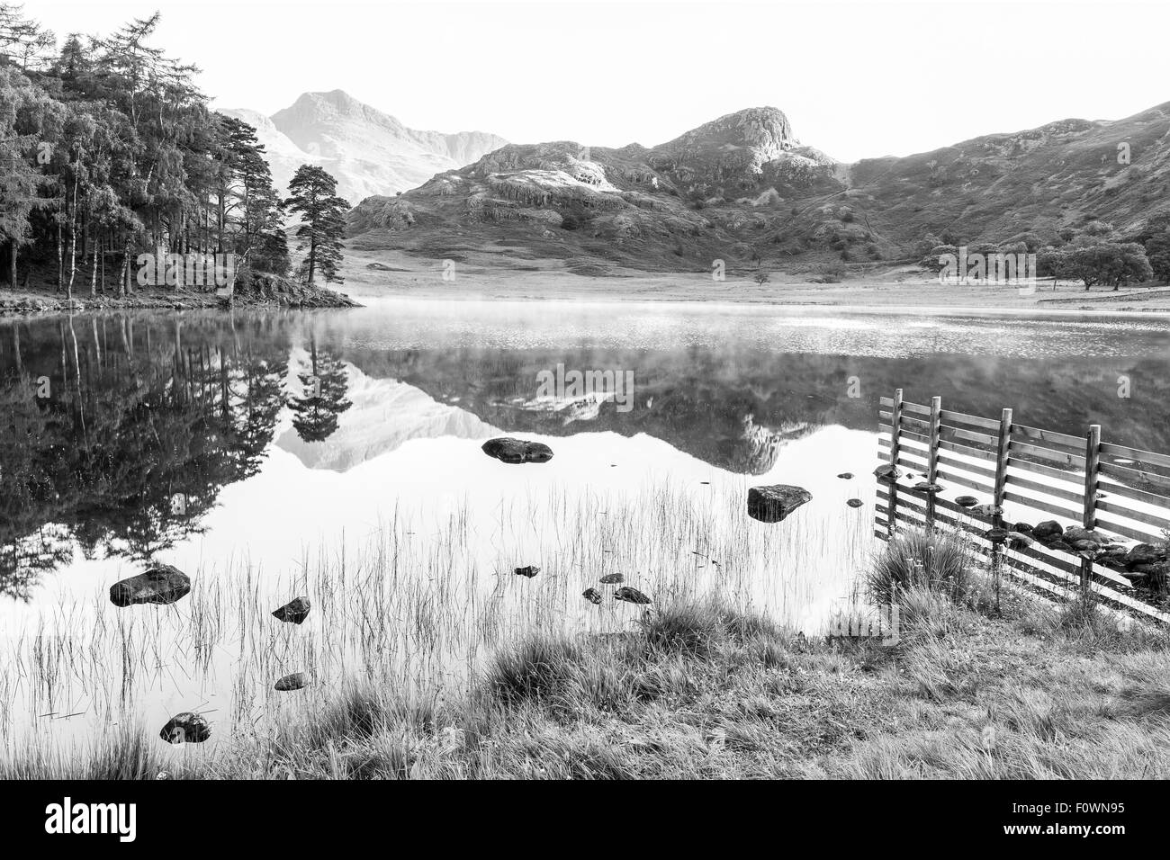A near perfect reflection of the Langale Pikes and Side Pike in Blea Tarn, Little Langdale in the Lake District Stock Photo