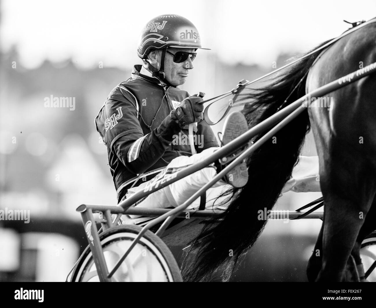Harness race driver and trainer legend Stig H Johansson - Stock Image