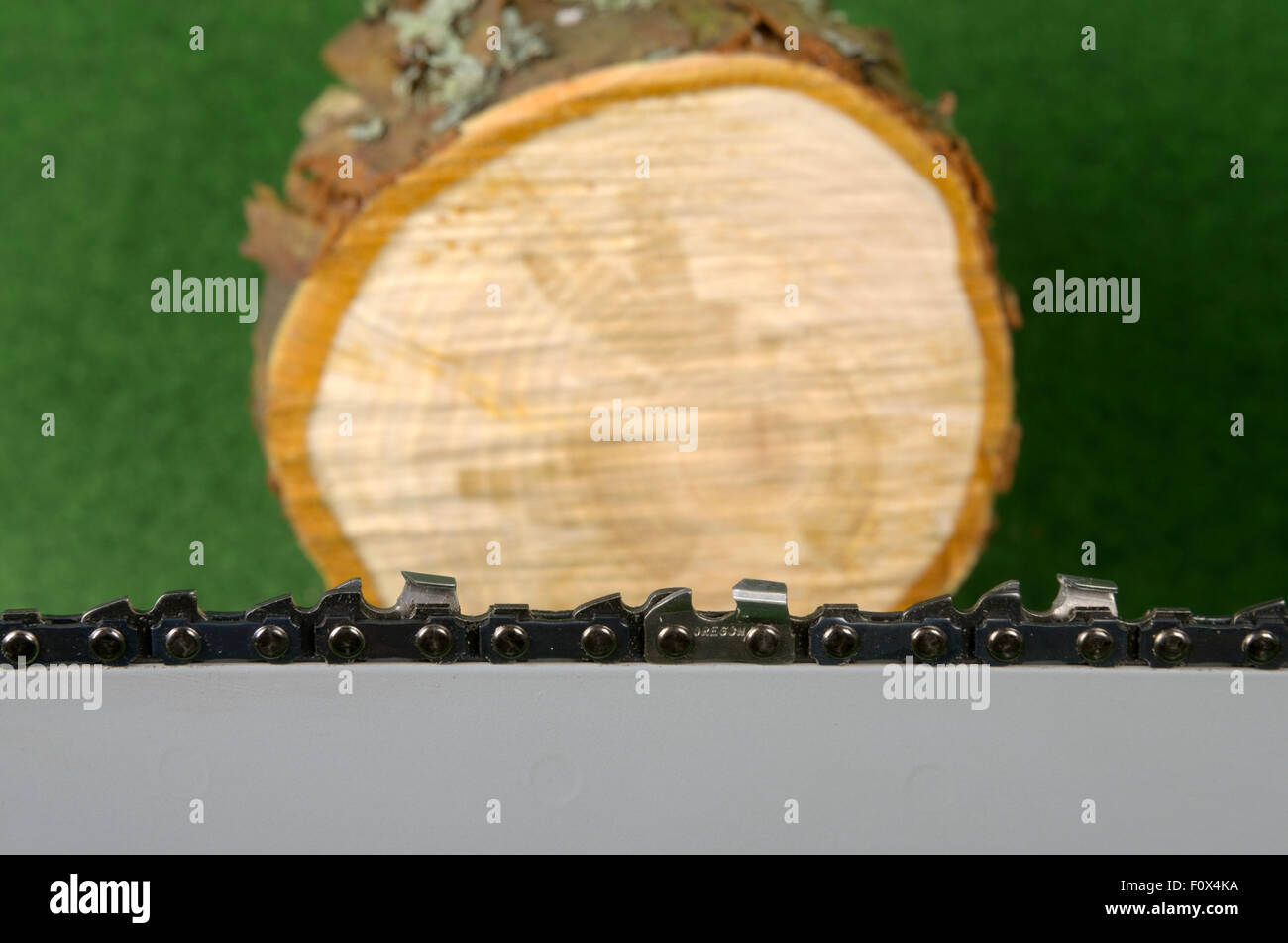 Sawn off log with chainsaw blade - Stock Image