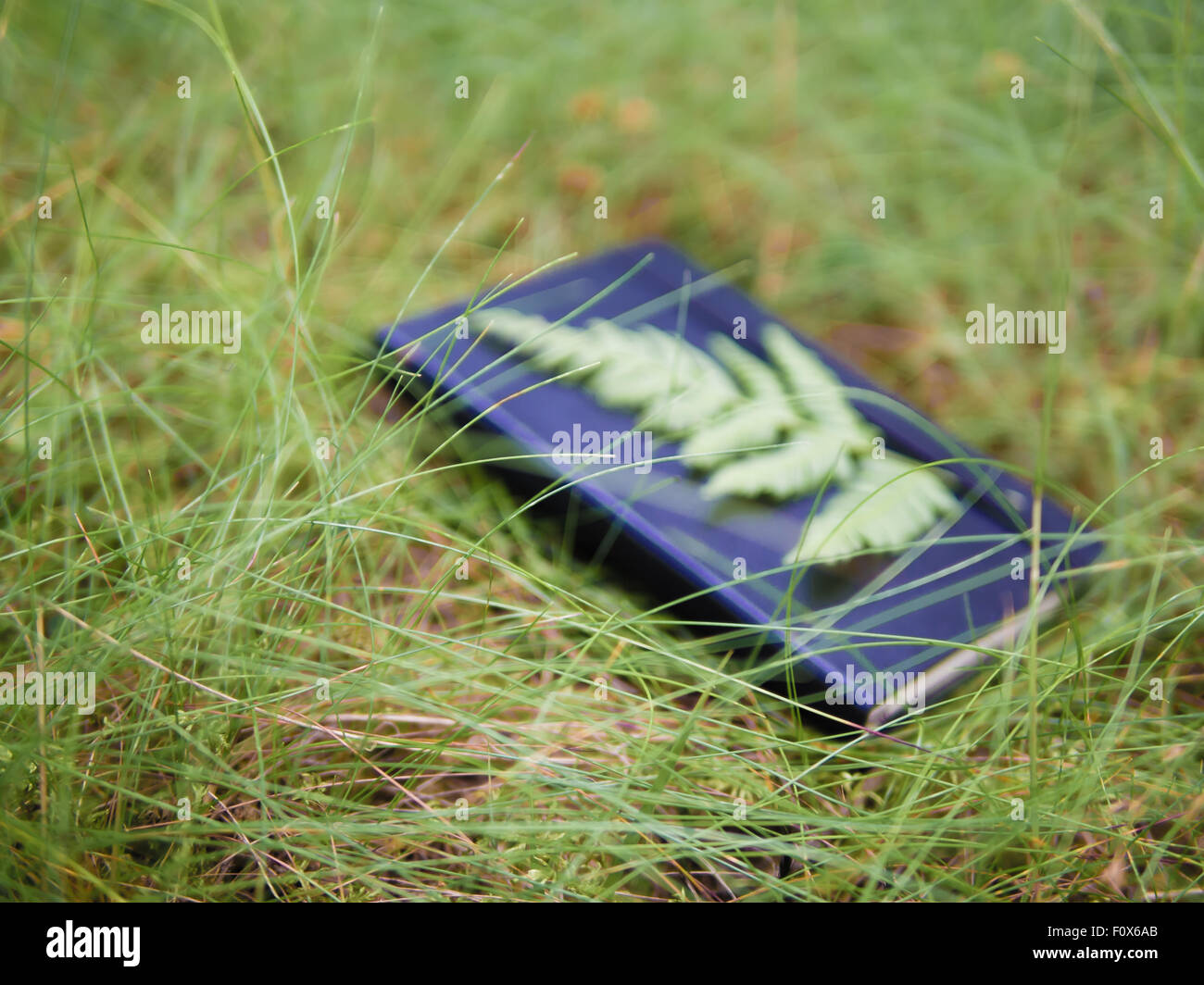 Daydream conceptualisation, out-of-focus notebook lying in grass - Stock Image