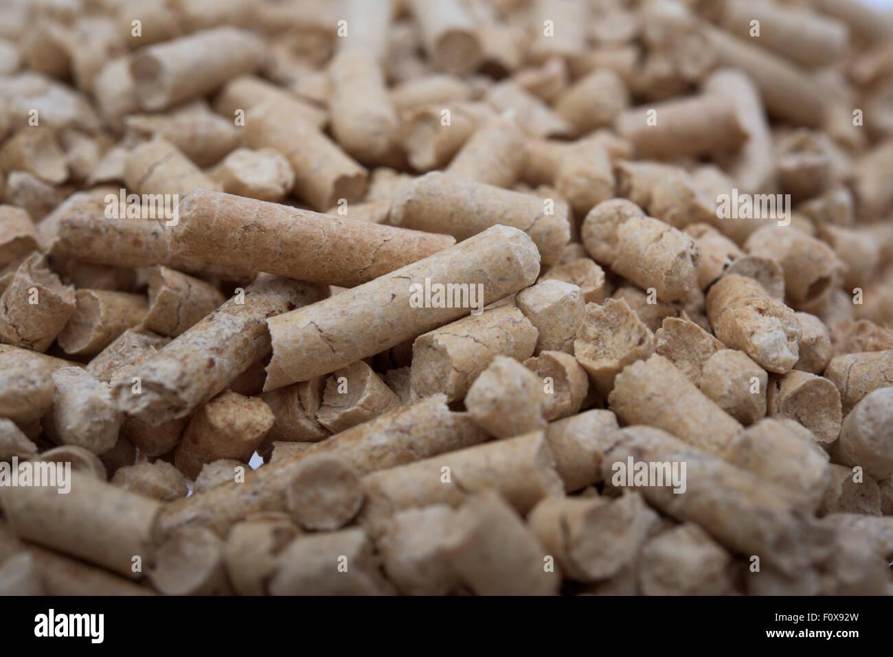 Biomass- pellets, close up, fir, pellets - Stock Image