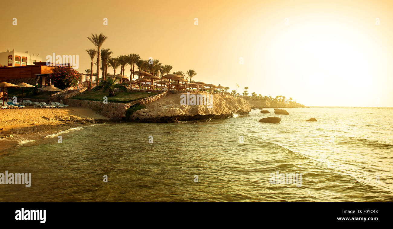 Coast of red sea at the sunset - Stock Image