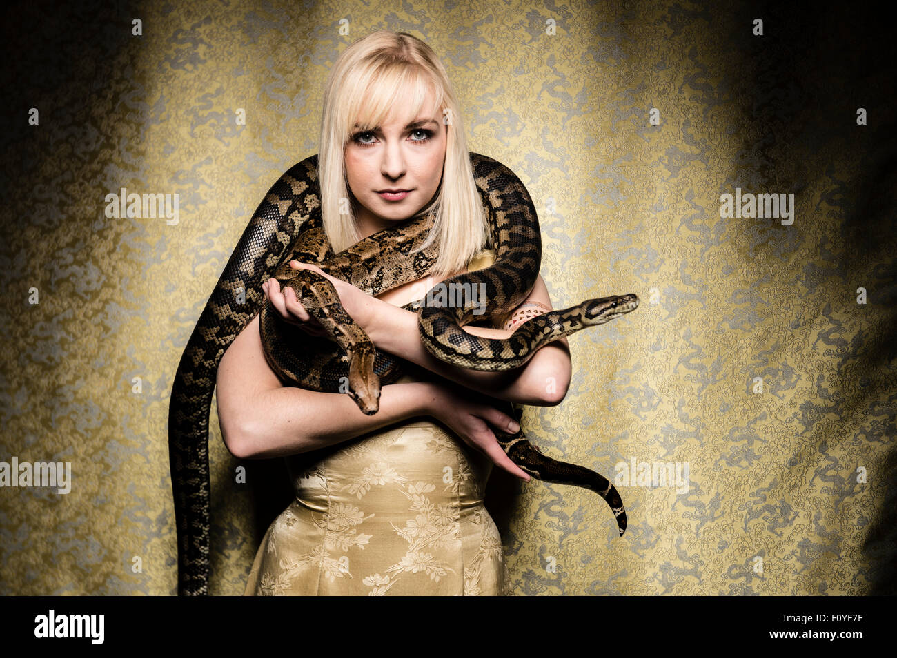 A young blonde haired woman girl female person posing with  python  snakes draped around her shoulders , UK (not - Stock Image