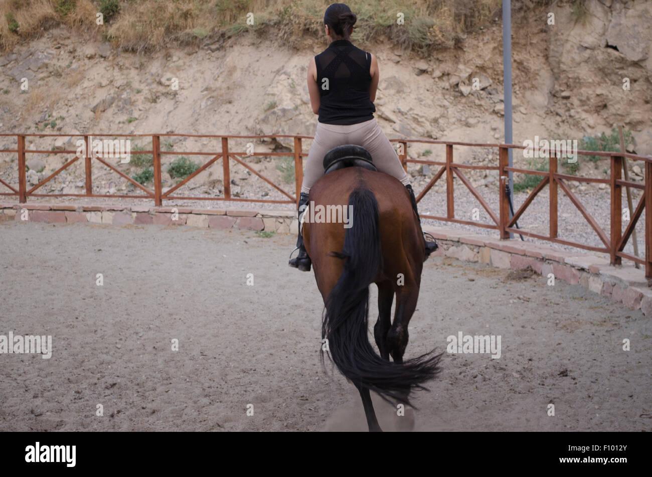 Horsewoman galloping on dark bay horse - Stock Image