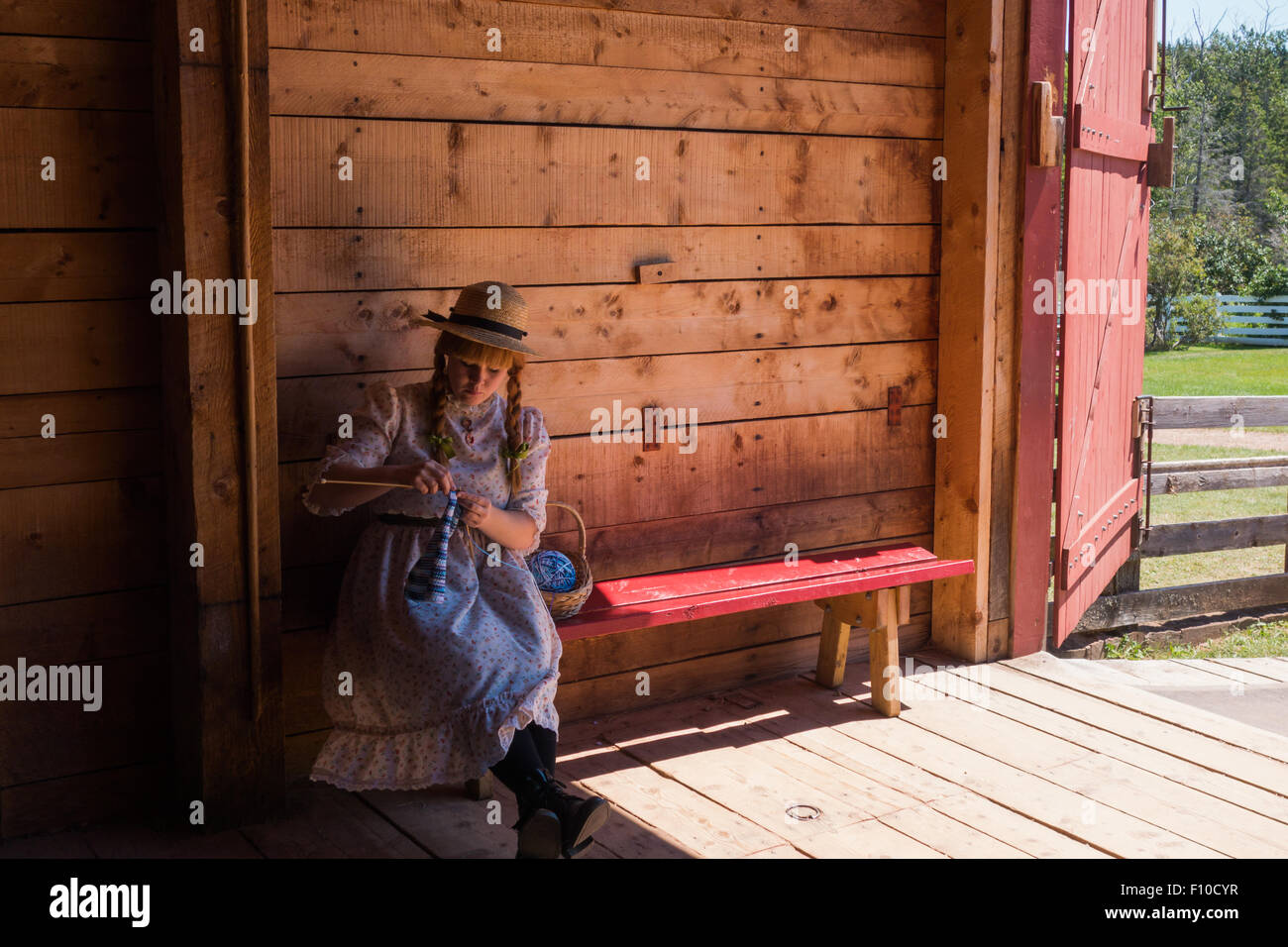 young female knitting farm girl barn - Stock Image