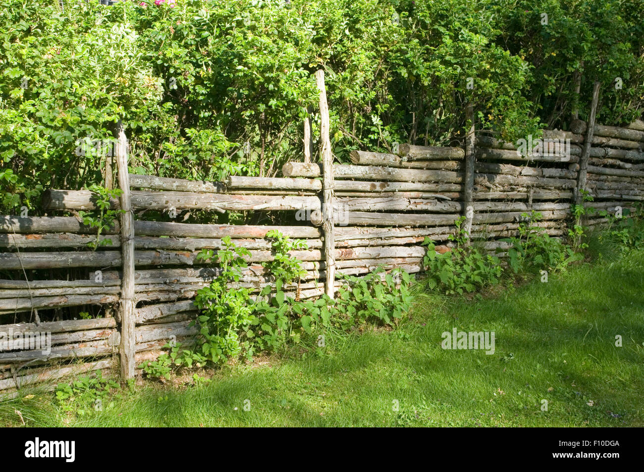 Picturesque fence of poles 52