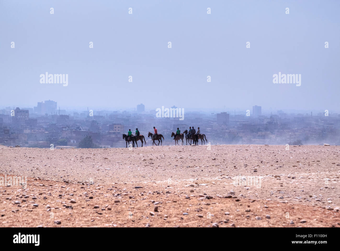 horse riding in the desert of Cairo, Egypt, Africa - Stock Image