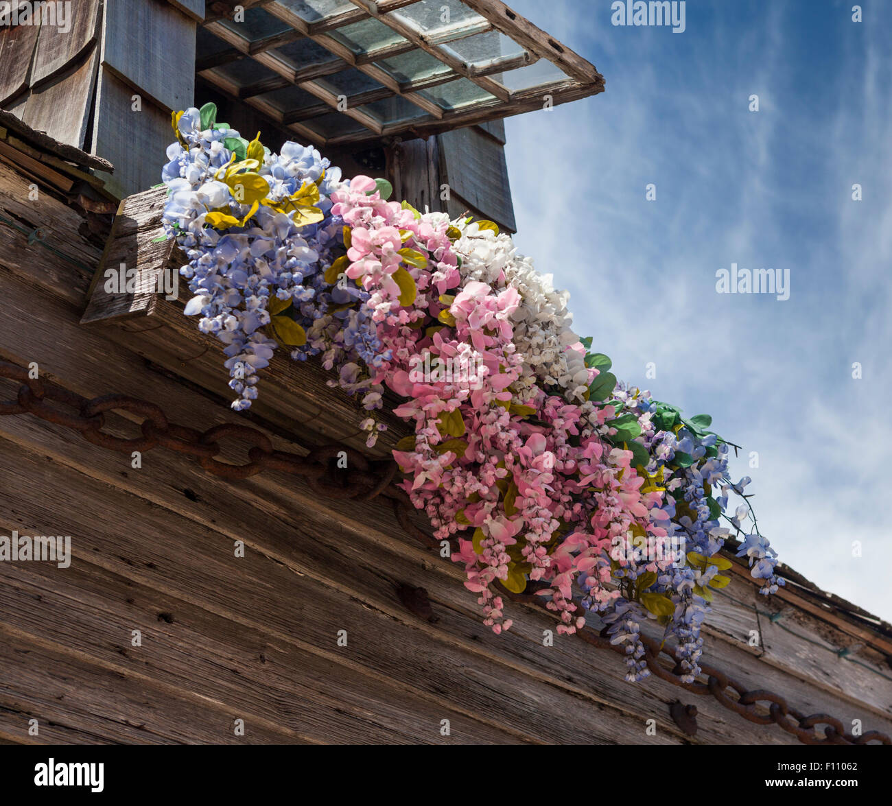 Window flower box and weathered wooden siding of old schoolhouse in historic district of St Augustine Florida USA - Stock Image