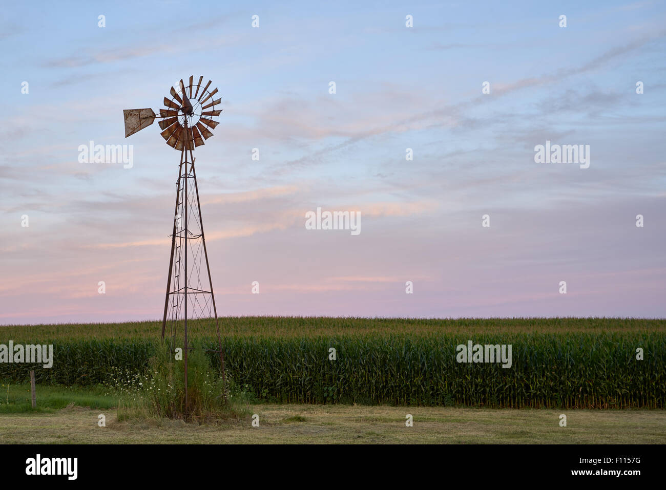 A windmill on a farm in rural IL - Stock Image
