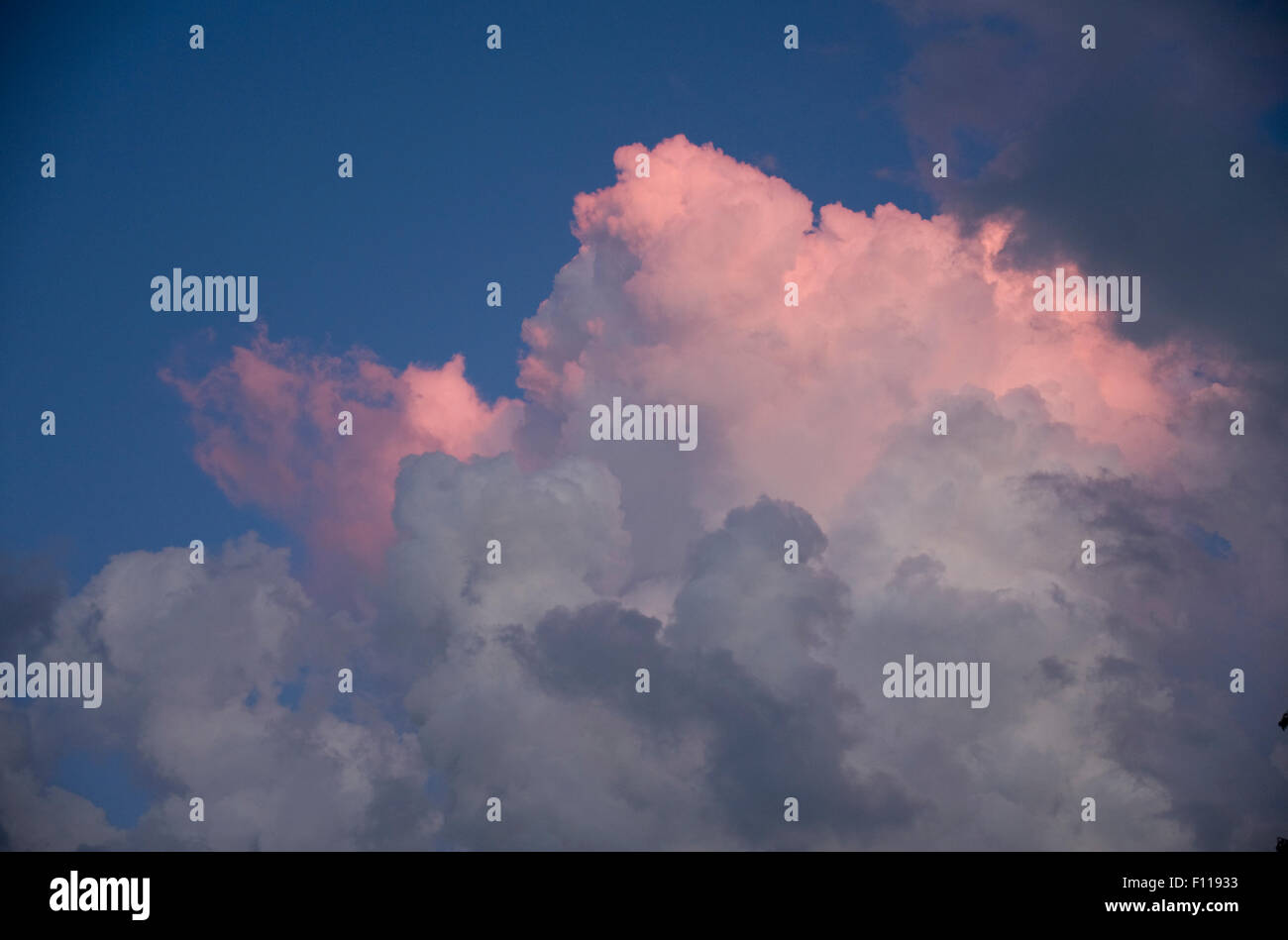 Midwestern storm Cumulonimbus calvus clouds in Indiana at sunset. - Stock Image