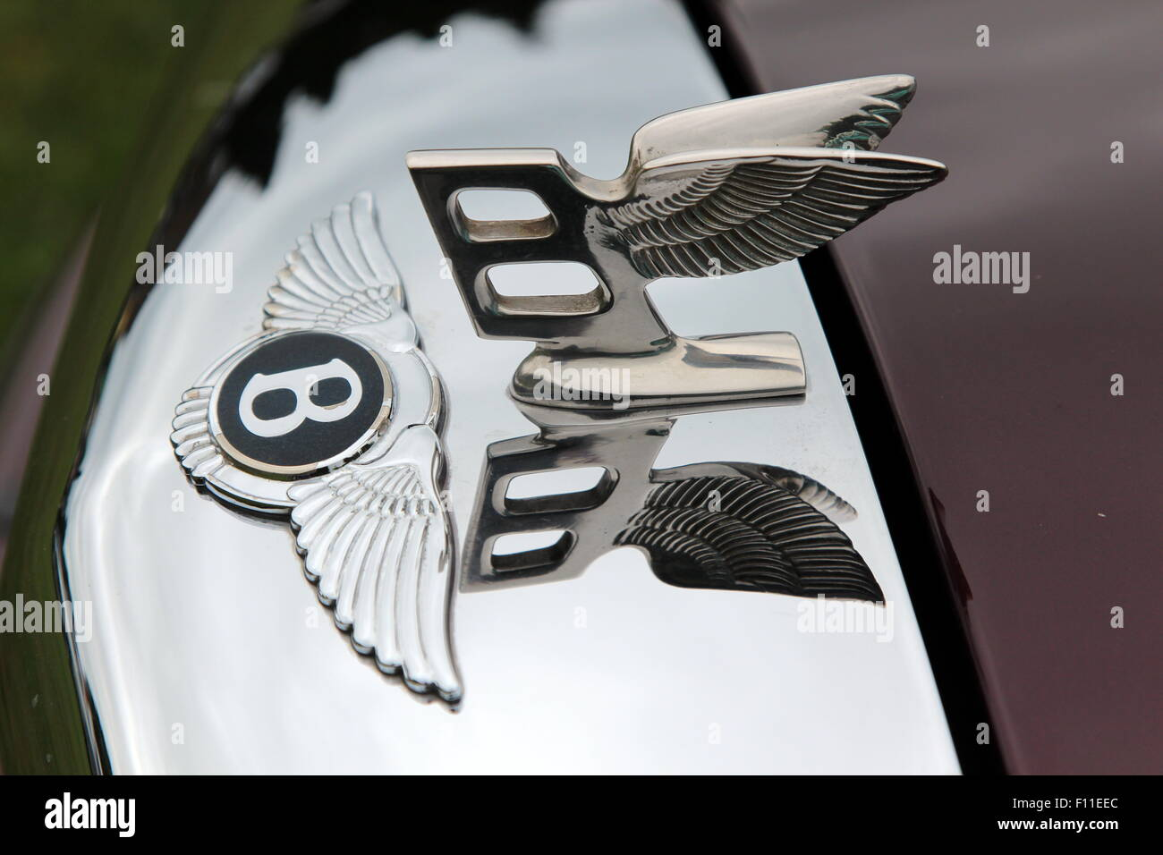 Bently stock photos bently stock images alamy winged bently hood ornament stock image voltagebd Image collections