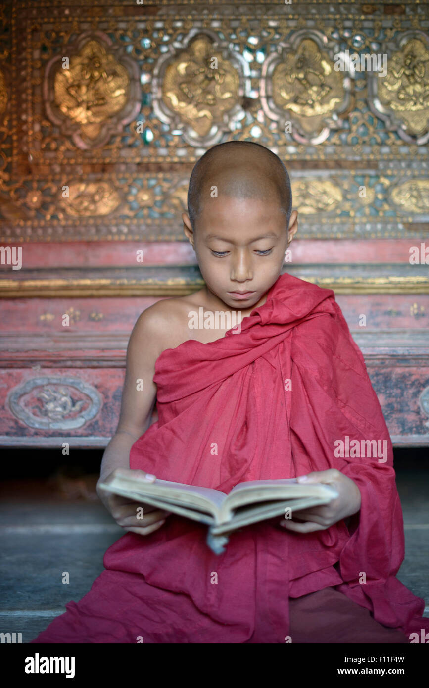 Asian monk-in-training reading book in temple - Stock Image