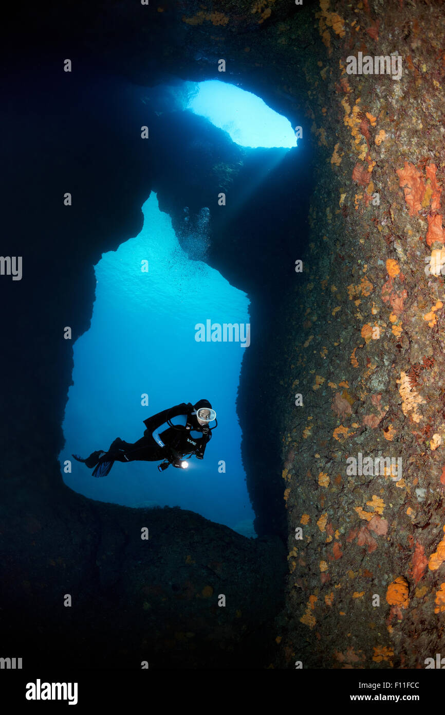 Diver with lamp in a rocky cave, with two entrances, plant growth with various sponges (Polifera), Corfu, Ionian - Stock Image