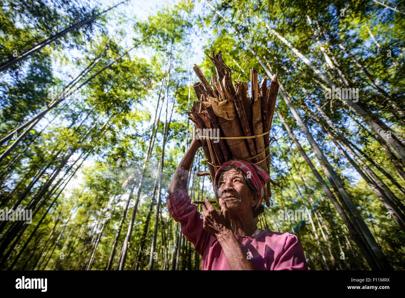 Low angle view of Asian man carrying stick bundle on her head - Stock Image