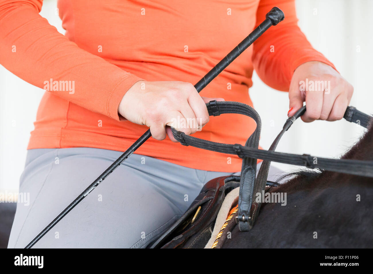 Manner holding the reins Hand facing downwards - Stock Image