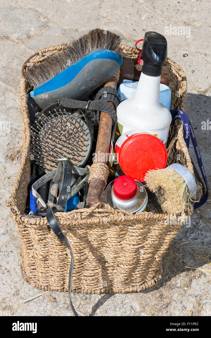 Domestic horse Grooming kit - Stock Image