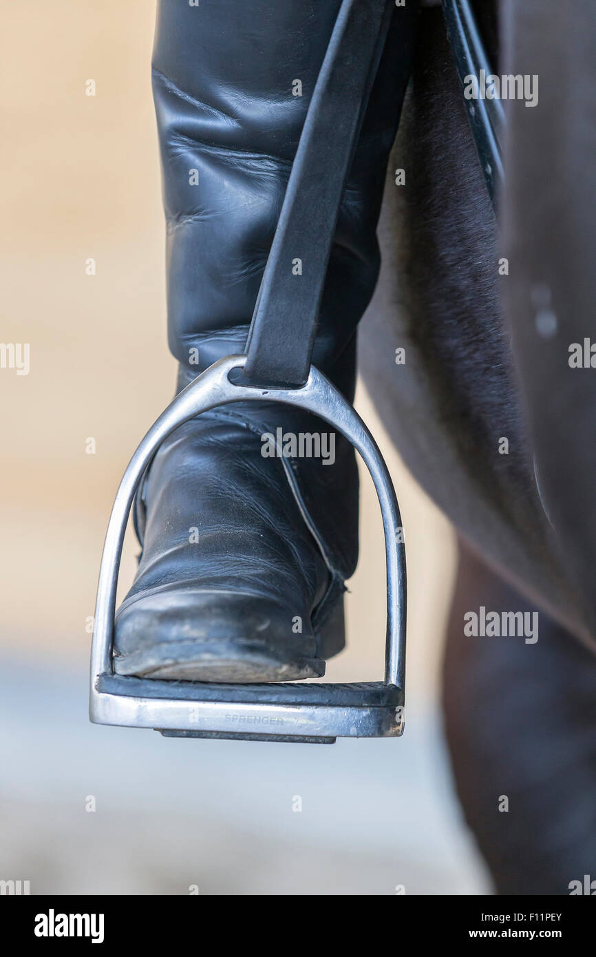 Horseback riding Riding boot stirrup - Stock Image
