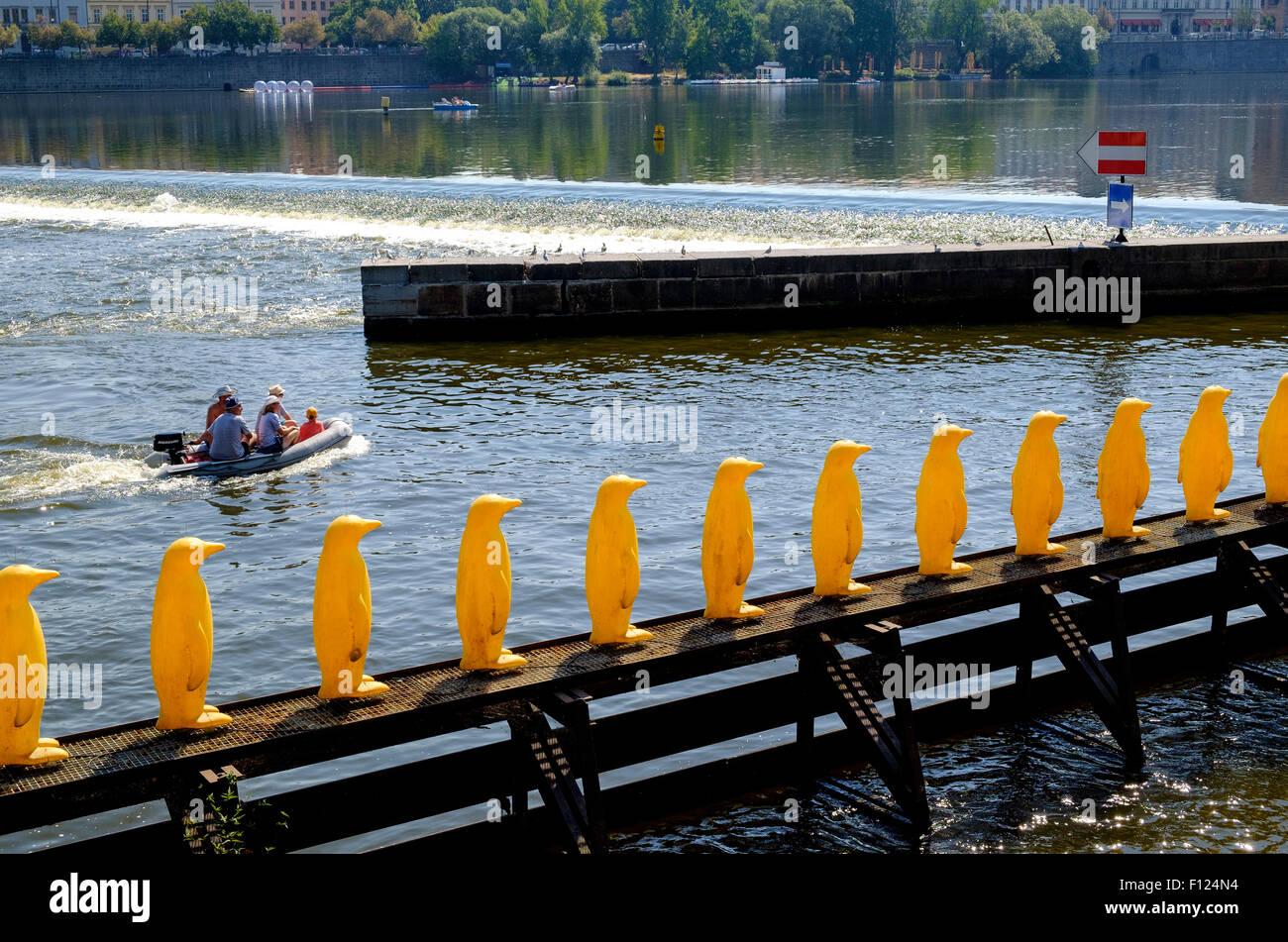 Penguins on the River Vltava near the Charles Bridge in Prague, Czech Republic, Europe - Stock Image