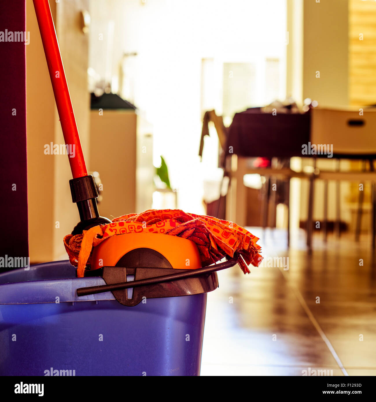 closeup of a microfiber mop in the dryer of a bucket ready to clean the floor - Stock Image