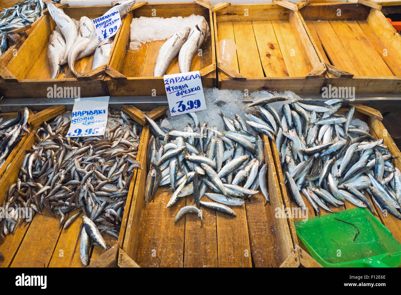 Different kinds of fish are sold at the fish market - Stock Image