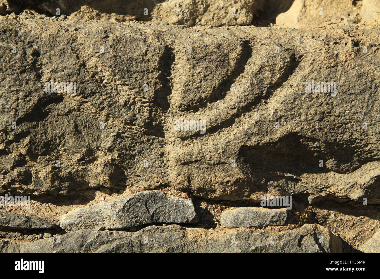 Golan Heights, engraved Menorah on a stone at the ancient Synagogue in Katzrin - Stock Image