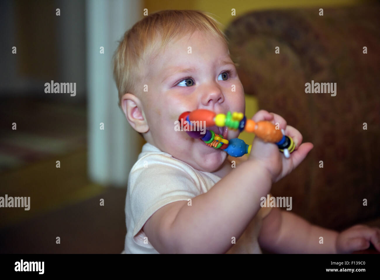 An eleven month old baby chewing on a plastic teething ring to alleviate the pain and discomfort of tooth ache. - Stock Image