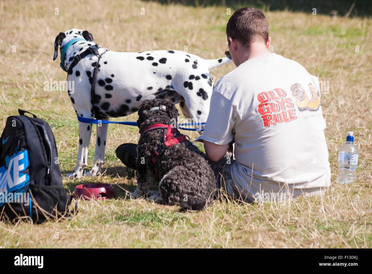 Man wearing Old Guys Rule t-shirt with dogs at the Ellingham & Ringwood Agricultural Society Annual Show at - Stock Image