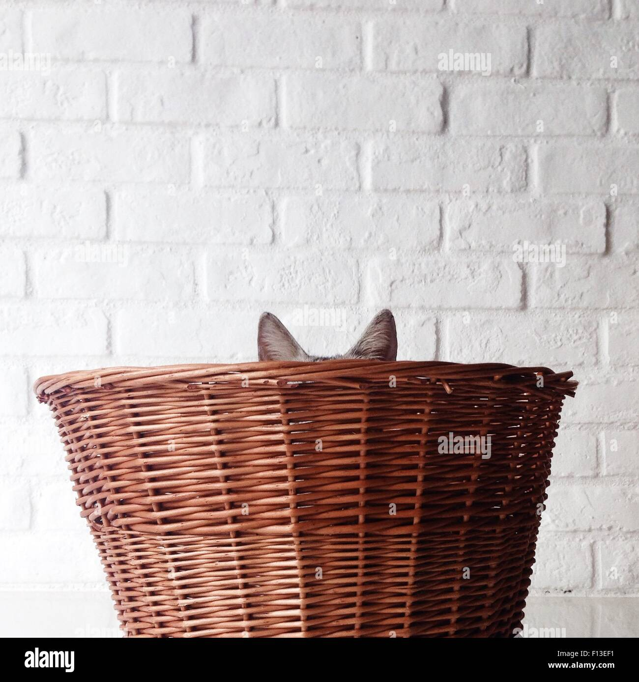 Cat hiding in a Basket Stock Photo