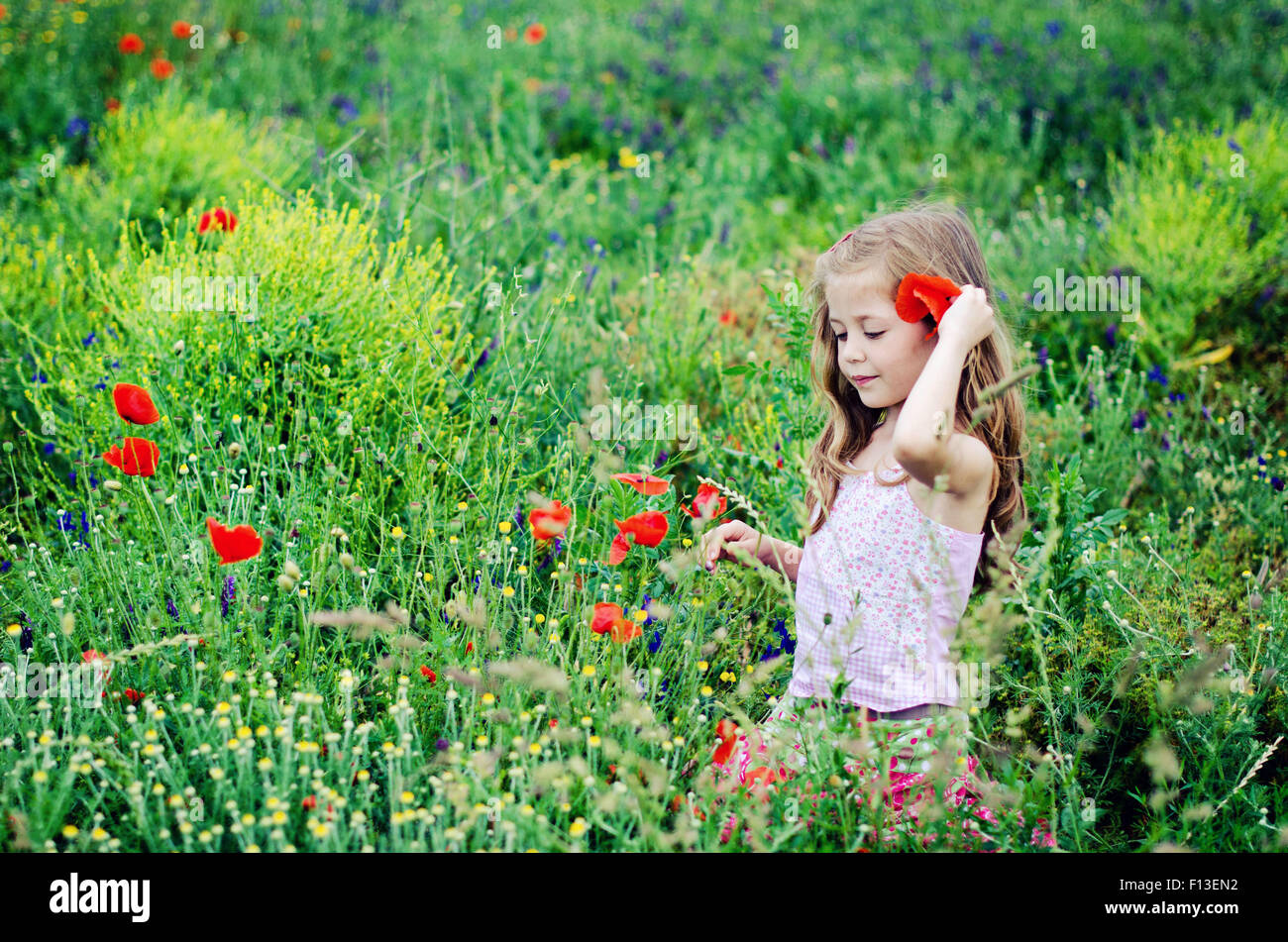 Girl walking through a poppy field - Stock Image