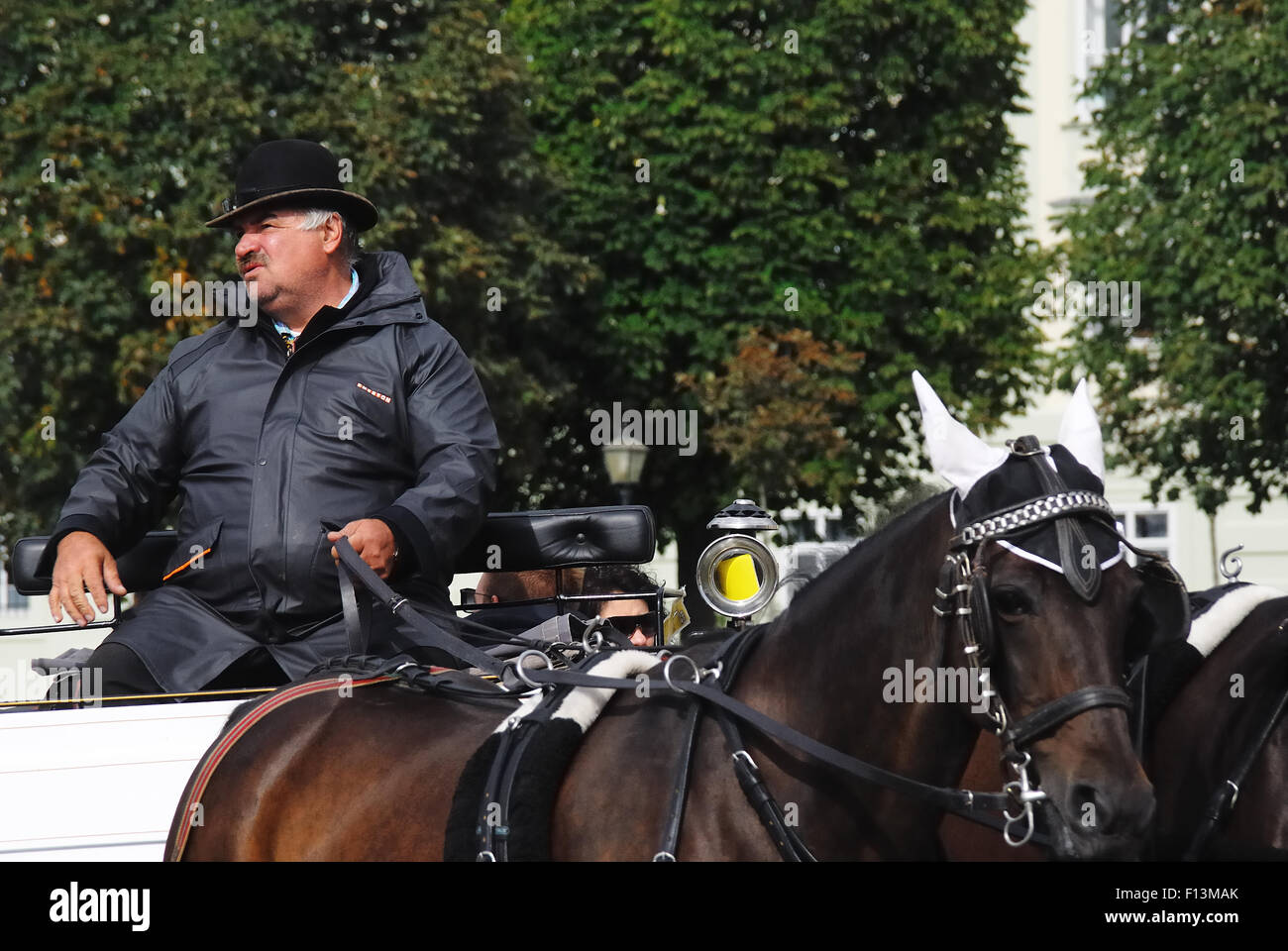 Vienna, a fiacre. The fiacre is the tipical Viennese cab. A coachman. - Stock Image