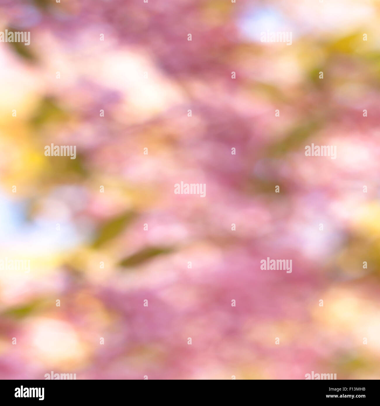 Abstract Blurred background texture of natural light. - Stock Image