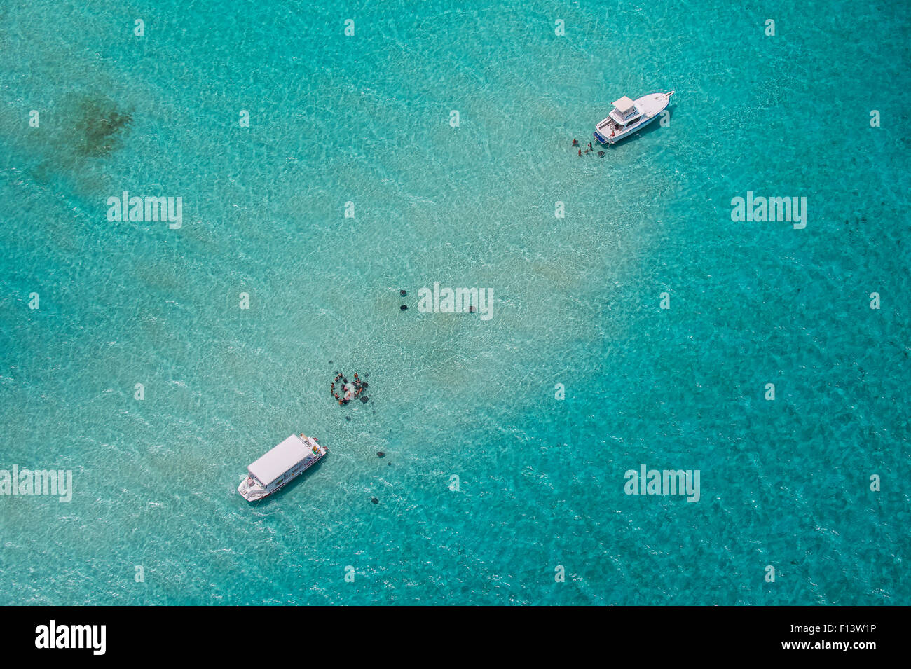 Aerial view of Stingray City, Grand Cayman. Stingray City is feeding site for Southern stingrays (Dasyatis americana), - Stock Image