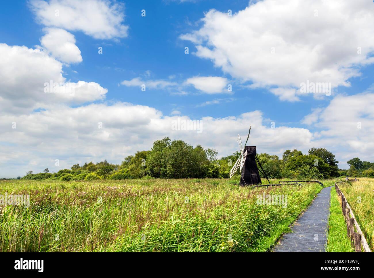 Trail through Wicken Fen, a wetland nature reserve near Wicken, Cambridgeshire, England, UK Stock Photo