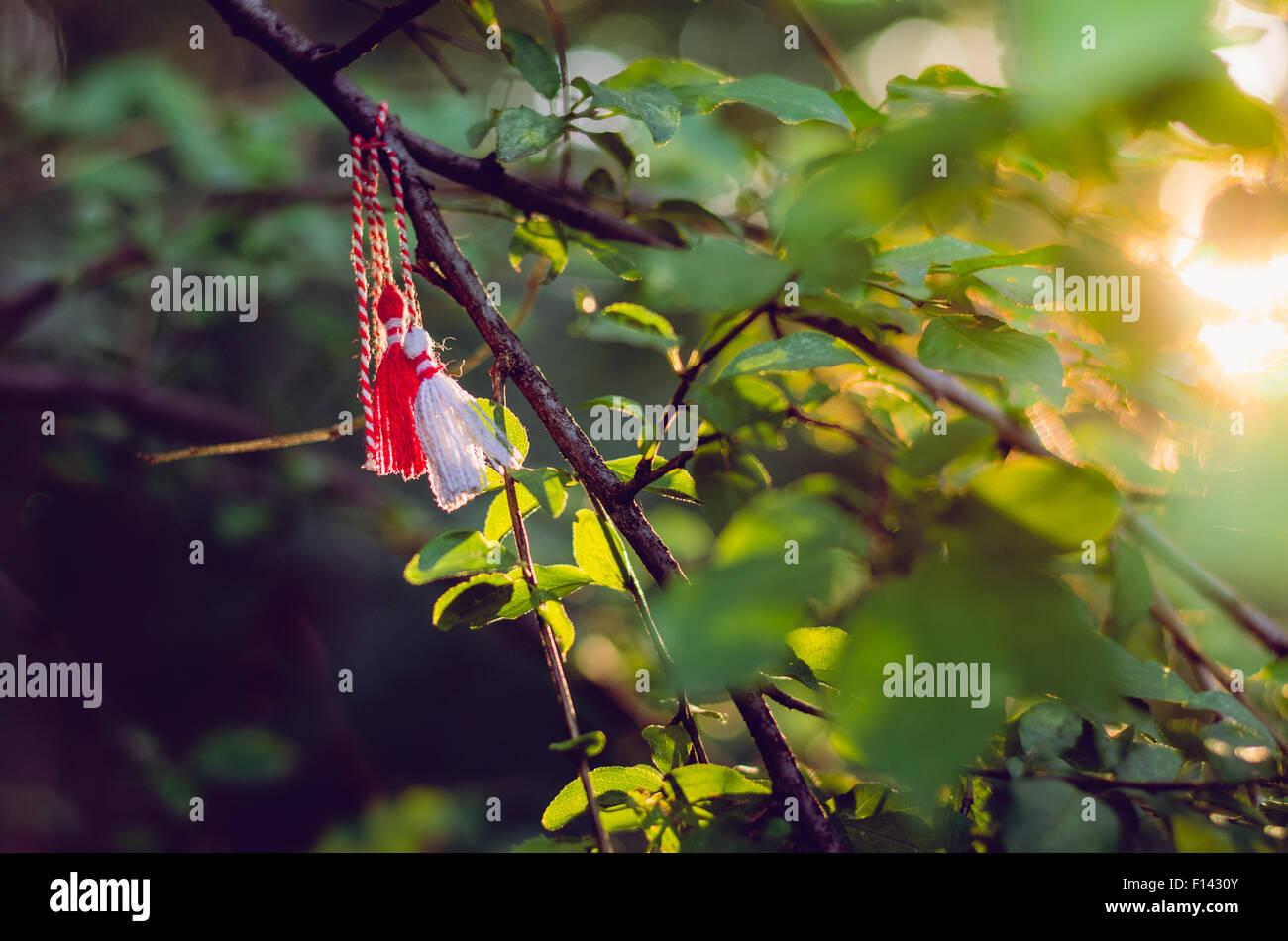 Baba marta stock photos baba marta stock images alamy baba marta day stock image m4hsunfo