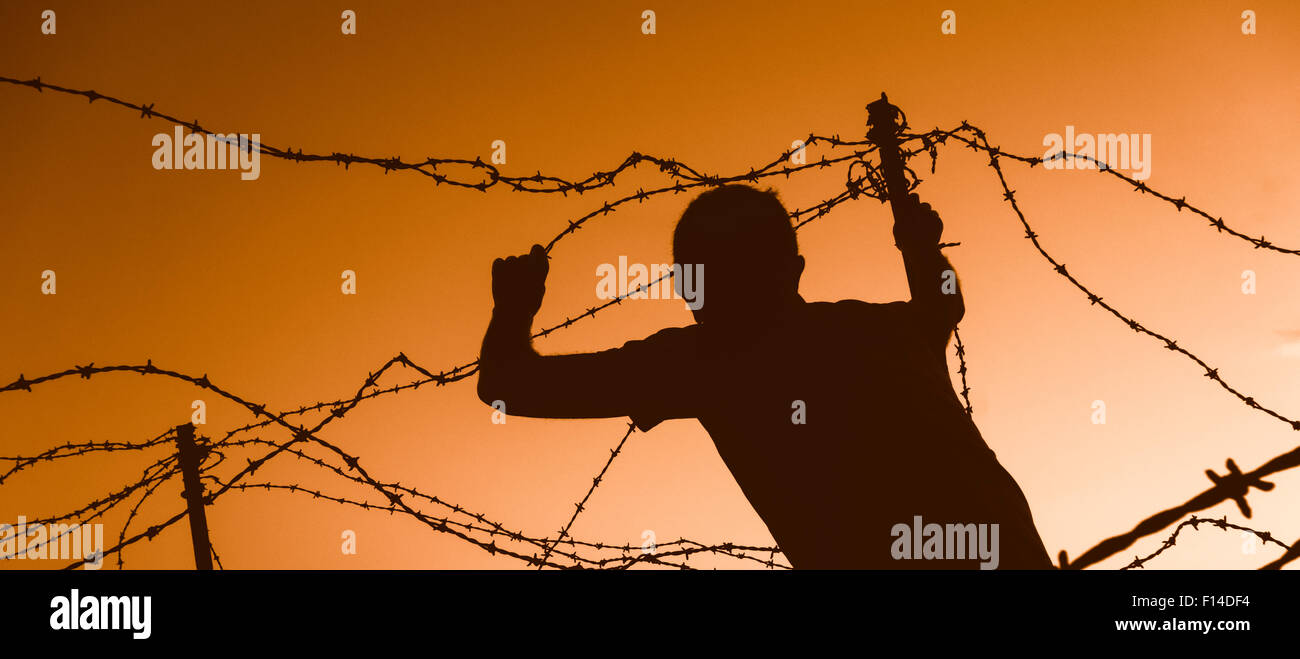 Man looking through barbed wire fence at sunset. Model released border crossing/illegal immigration/refugee... concept - Stock Image