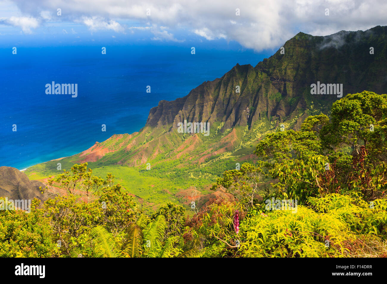Mount Waiʻaleʻale, often spelled Waialeale in English, is a shield volcano and the second highest point on the island - Stock Image