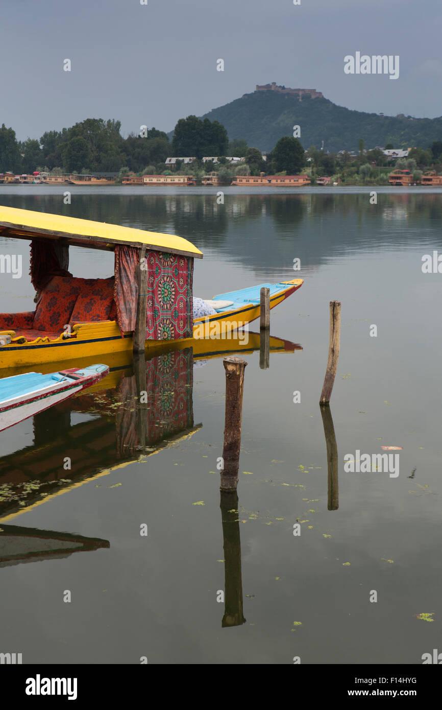 India Jammu Kashmir Srinagar Nishat Lake Shikara At