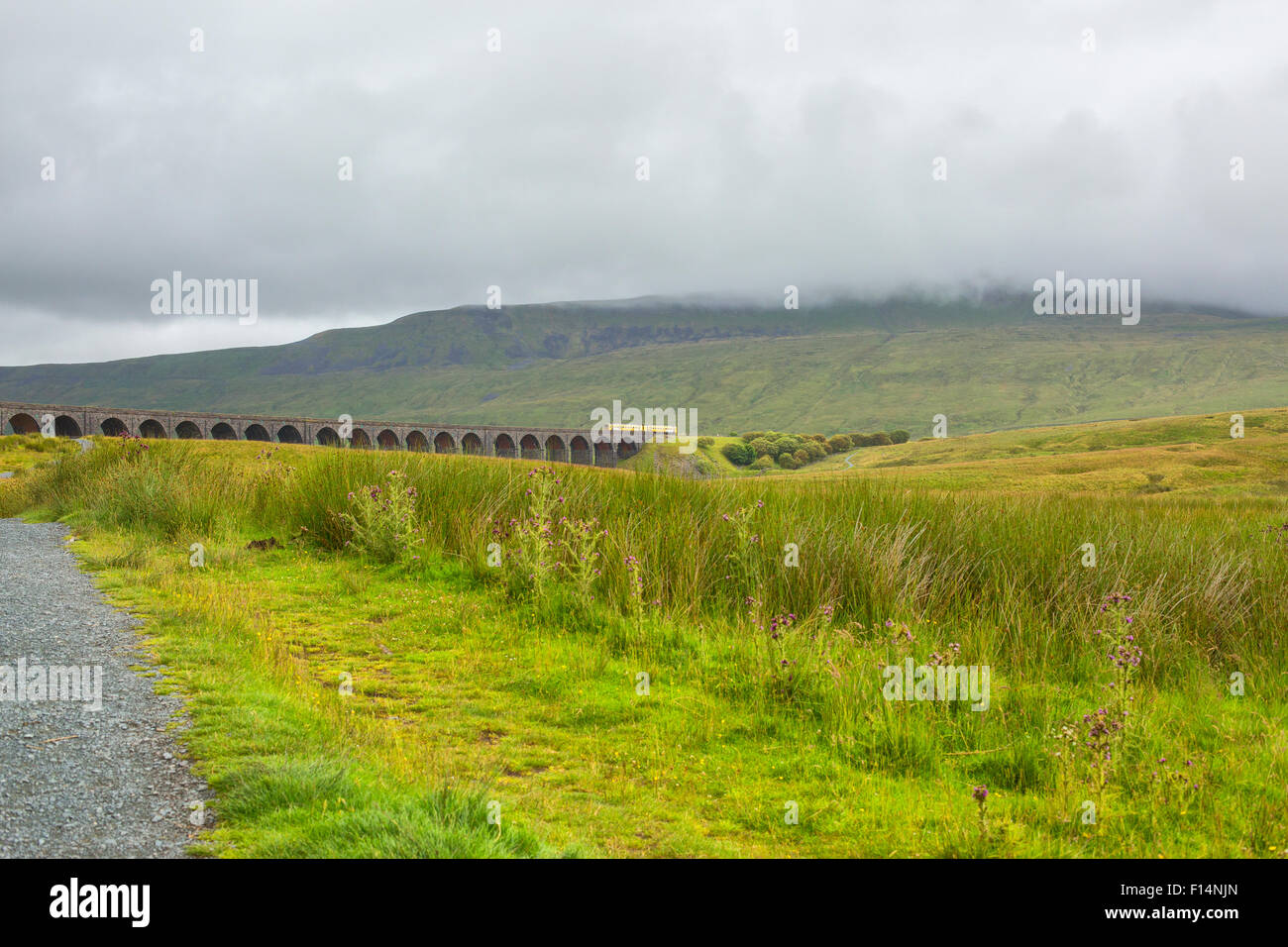 Famous Ribblehead Viaduct in Yorkshire Dales National Park with train - Stock Image