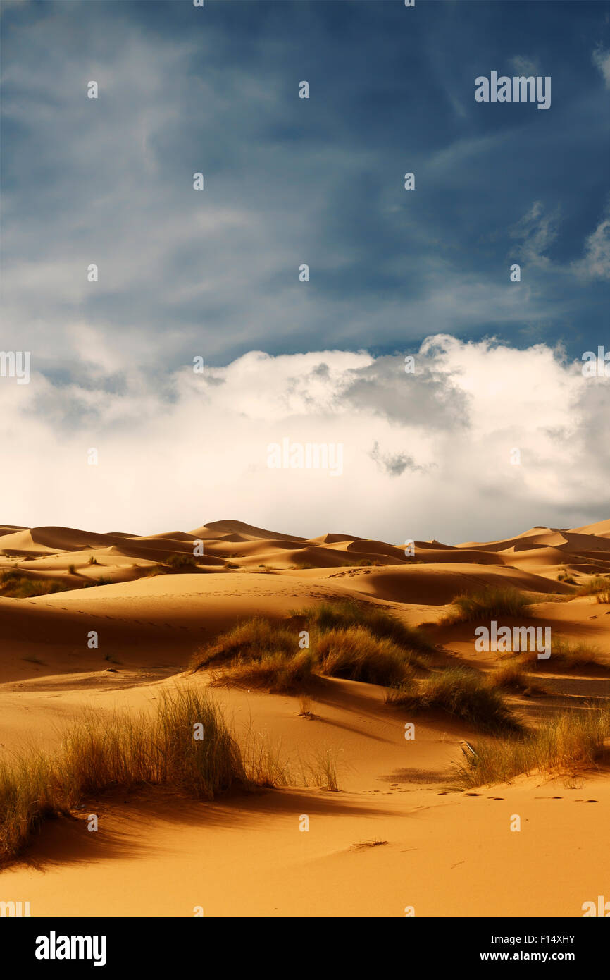Dunes of Sahara Desert , Morocco - Stock Image