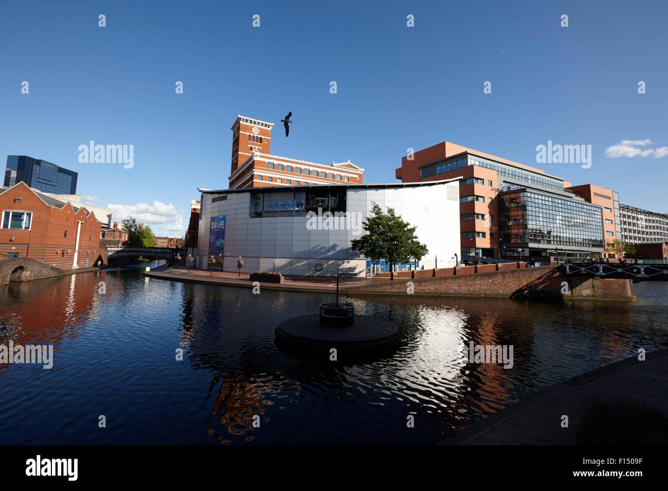 deep cutting junction old turn junction of birmingham canal navigations main line and newhall branch Birmingham - Stock Image