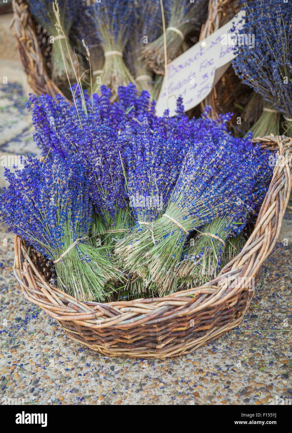 Lavender in front of a store in Sault in Provence - Stock Image