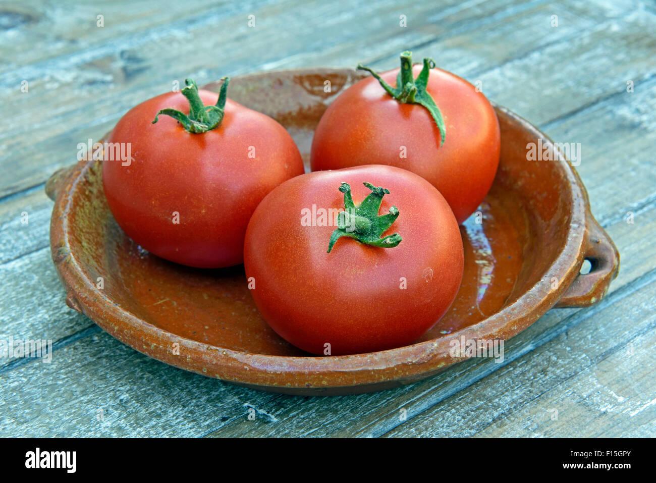Essex Wonder tomatoes, 3 displayed on vintage terracotta dish - Stock Image