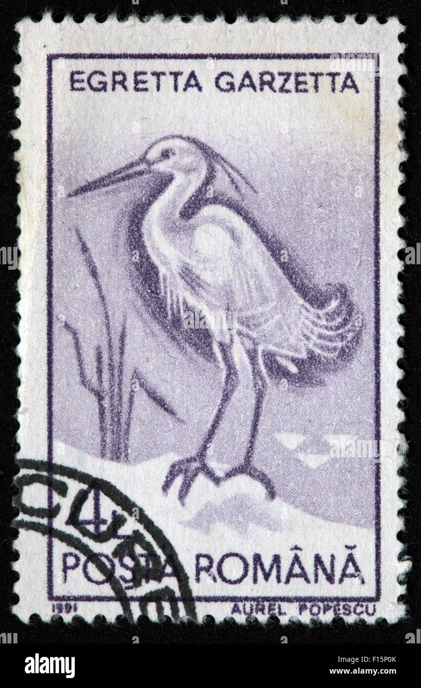 1991 Posta Romana Egretta Garzetta Egret Aurel Popescu Stamp Stock Photo
