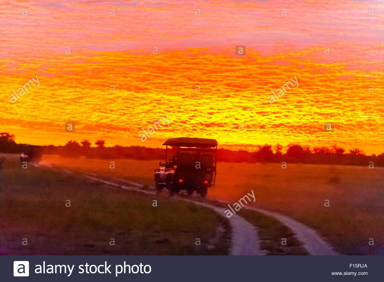 A safari vehicle starts a game drive at sunrise, Nxai Pan National Park, Botswana. - Stock Image